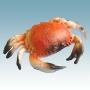 Figurer Krabba 20 cm